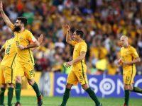 Mile Jedinak of Australia celebrates with scoring a goal