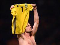 Sweden's midfielder Sebastian Larsson celebrates