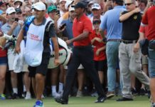 Tiger Woods is swarmed by fans as he walks to the 18th green
